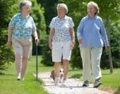 Người già đi bộ